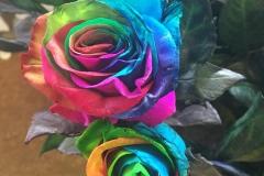Multicoloured Flower2