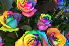 Multicoloured Flower5