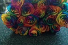 Multicoloured Heads