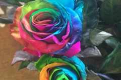 Multicoloured Flower4
